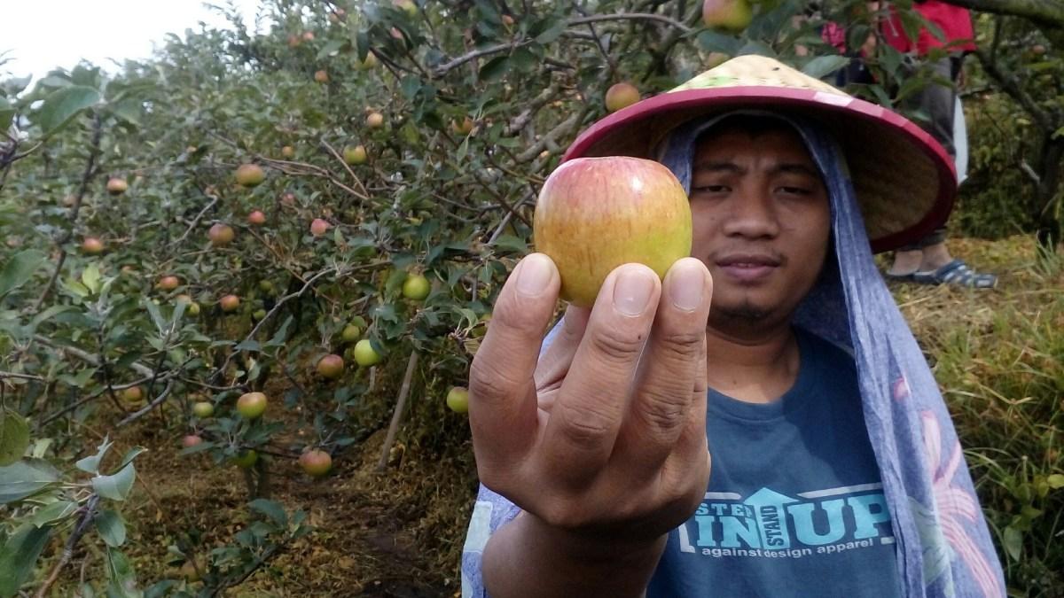 farmworker rights