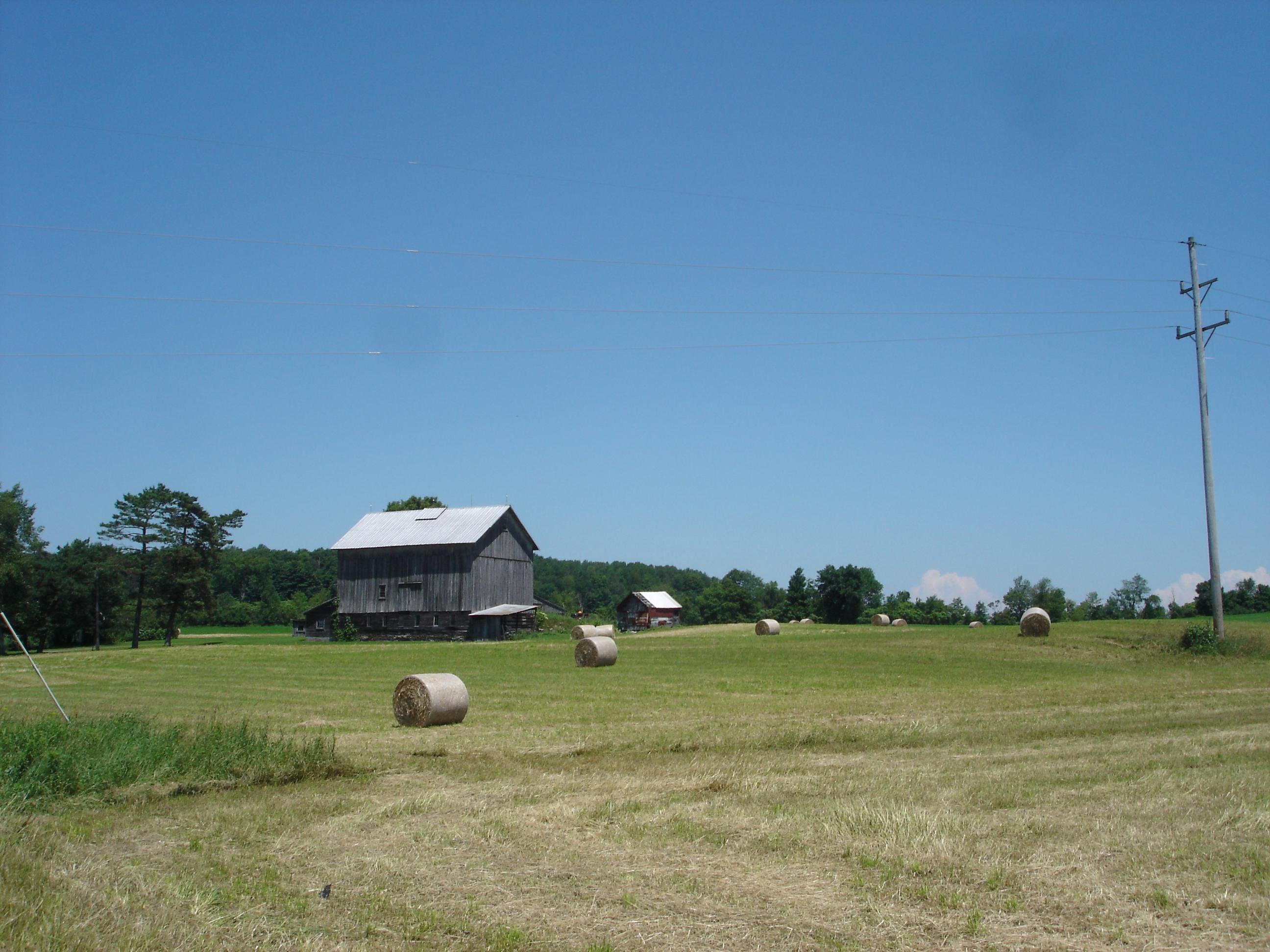farming, farm bankruptcies, The River Newsroom